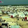800 đối tượng liên hệ với IS đã bỏ trốn