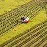 Đề nghị miễn thuế sử dụng đất nông nghiệp đến năm 2030
