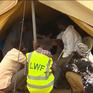 Khoảng 40.000 người Kenya tị nạn giả mạo tại Mỹ, châu Âu