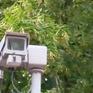 Anh sử dụng camera giám sát nhận diện tội phạm