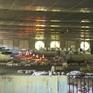Khánh Hòa liên tiếp công bố dịch tả lợn châu Phi