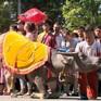 Diễu hành biểu diễn nghệ thuật xiếc tại phố đi bộ Hồ Gươm