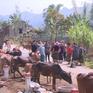 Tập trung phát triển vùng dân tộc thiểu số, miền núi