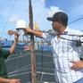 Kiên quyết không cho tàu cá chưa lắp đặt thiết bị giám sát hành trình ra khơi