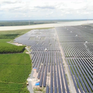 Việt Nam có tiềm năng lớn về điện mặt trời trên mặt hồ
