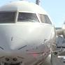 Nhiên liệu sinh học - Điểm nổi bật tại Triển lãm hàng không Las Vegas, Mỹ