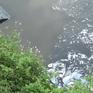 Bắt quả tang công ty xả thải bẩn hoạt động không phép tại TP.HCM