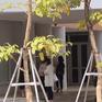 Hôm nay (18/11), bắt đầu chấm thi tuyển viên chức giáo viên Hà Nội