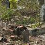 Gấp rút di dời nghĩa trang Bình Hưng Hòa