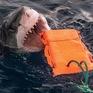Phát minh bộ quần áo lặn có khả năng chống cá mập