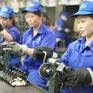 Cấm doanh nghiệp nước ngoài tuyển dụng trực tiếp lao động Việt Nam