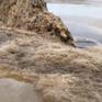 Nước biển màu đen ở Quảng Ngãi không có mùi lạ