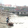 Thực hiện nhiều biện pháp giảm thiểu ô nhiễm môi trường âu thuyền Thọ Quang