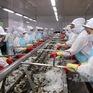 Cà Mau đặt mục tiêu xuất khẩu tôm đạt 2 tỷ USD