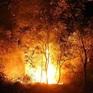 Nhiều tỉnh miền núi phía Bắc đang ở cấp cháy rừng cực kỳ nguy hiểm