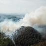 Cảnh báo cháy rừng ở các tỉnh miền núi phía Bắc