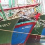 Tàu cá nằm bờ, ngư dân sốt ruột chờ bảo hiểm để ra khơi