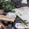 Hàng nghìn điểm xả thải trên cả nước không được xử lý triệt để
