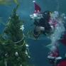 Cây thông Noel cho những chú cá mập