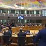 Châu Âu bác bỏ đề nghị nhận lại công dân từng tham chiến cho IS