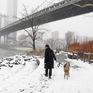 Bão tuyết tấn công nước Mỹ, hơn 1.000 chuyến bay phải hủy bỏ
