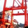 VIMC muốn tiếp nhận ngay Cảng Quy Nhơn sau kết luận thanh tra