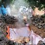 Thiếu kinh phí chống dịch tả lợn châu Phi