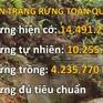 Triển khai nhiều giải pháp phát triển rừng