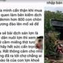 Điều tra người dùng Facebook tung tin đào 800 lợn bị dịch chết để mổ thịt