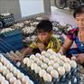 Trứng vịt xuống giá, người nuôi gặp nhiều khó khăn