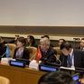 """Hội thảo quốc tế """"Việt Nam: Khắc phục hậu quả chiến tranh, nỗ lực vì hòa bình và phát triển bền vững"""""""
