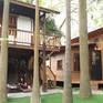 Trào lưu sống tối giản tại Việt Nam
