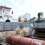 TP.HCM cắt giảm tổng vốn đầu tư 2 tuyến metro