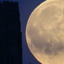 Hôm nay (19/4) sẽ xuất hiện hiện tượng Mặt trăng hồng