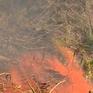 Tình hình cháy rừng diễn biến phức tạp trên cả nước