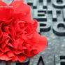Nga: Hoa cẩm chướng đỏ dành cho cựu chiến binh
