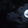 """Thưởng thức """"trăng xanh"""" tại Đức"""