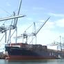 Cảnh báo thương mại toàn cầu trì trệ