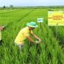 Nông nghiệp ĐBSCL chuyển mình với Nghị quyết 120
