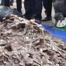 Phát hiện hơn 6 tấn vảy tê tê trong container hạt điều