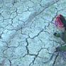 1/3 hồ, đập lớn ở Nghệ An xuống dưới 50% dung tích