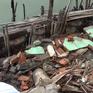 Long An: Sạt lở khiến 7 căn nhà bị hư hỏng