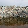 Tổ chức Hòa bình Xanh kêu gọi Đông Nam Á cấm nhập khẩu rác thải nhựa