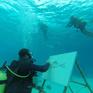 Vẽ tranh ở độ sâu 6m dưới mặt nước biển
