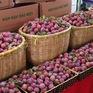 Mở rộng thị trường nông sản tại Sơn La