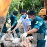 Phát hiện 5 ổ dịch tả lợn châu Phi tại Bình Phước