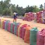 Xuất khẩu gạo giảm cả về số lượng và giá trị