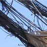 """Nguy hiểm lơ lửng dưới lưới điện """"mạng nhện tử thần"""" ở Nha Trang"""