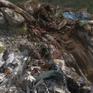 Minh bạch kinh tế rác: Có hay không lợi ích nhóm?