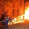 Cháy rừng liên tục xảy ra ở mức đáng báo động tại miền Trung